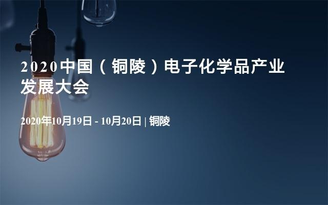 2020中国(铜陵)电子化学品产业发展大会