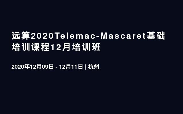 远算2020Telemac-Mascaret基础培训课程12月培训班