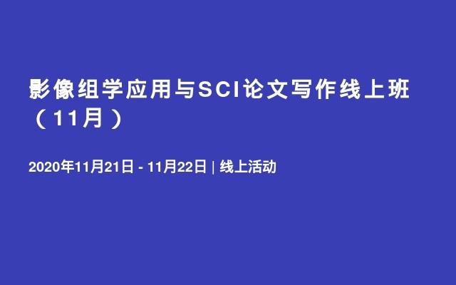 影像组学应用与SCI论文写作线上班(11月)