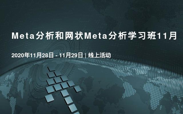 Meta分析和网状Meta分析学习班11月