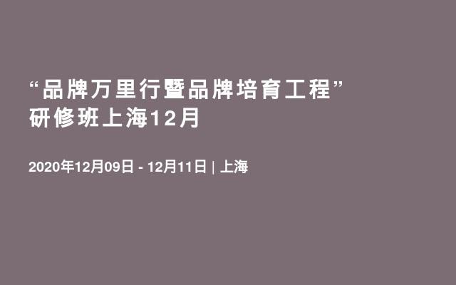 """""""品牌万里行暨品牌培育工程""""研修班上海12月"""