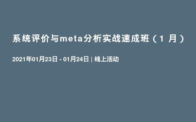 系统评价与meta分析实战速成班(1 月)
