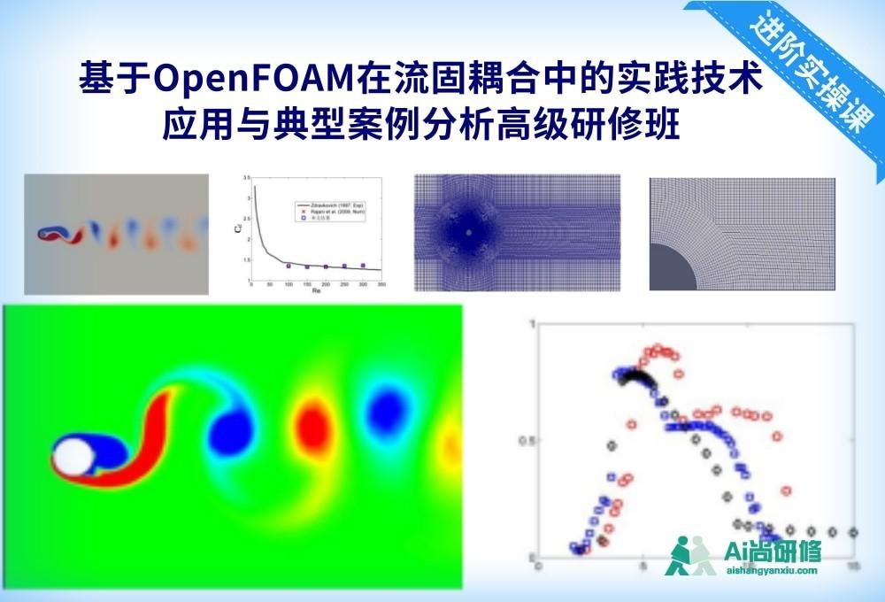 基于OpenFOAM在流固耦合中的实践技术应用与典型案例分析高级研修班
