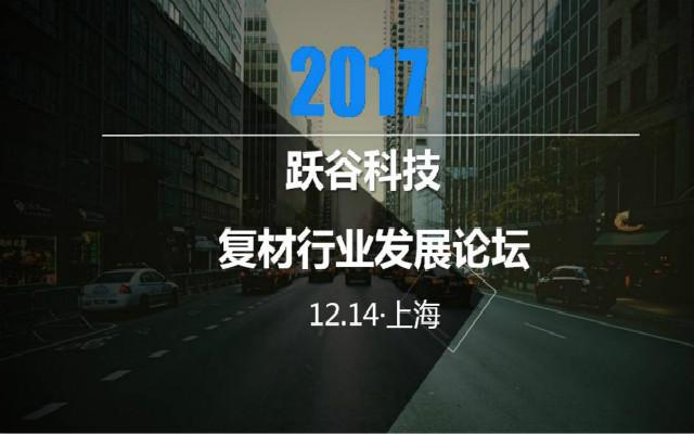 2017月跃谷科技复材行业发展论坛