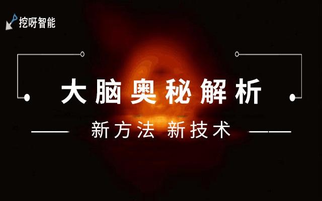 2019大脑奥秘解析新方法和新技术之教育应用大会(南昌)