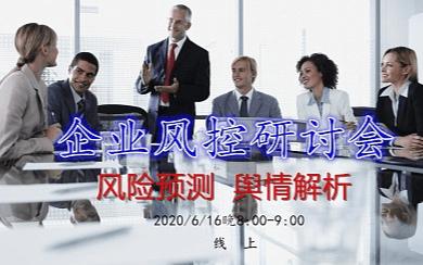 企业风控研讨会