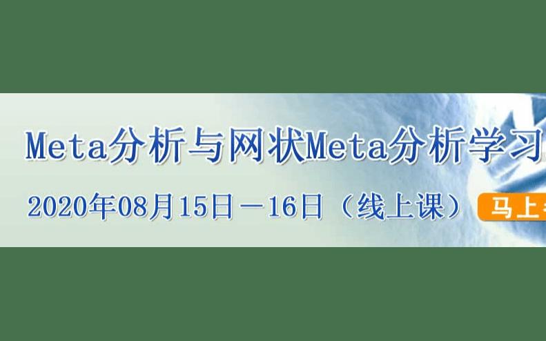 Meta分析与网状Meta分析学习班(8月线上直播课)
