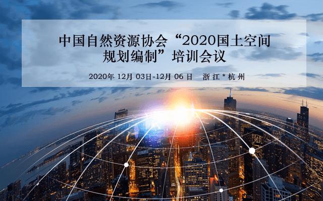 【12月】中国自然资源协会《2020国土空间规划编制》