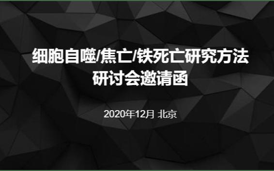 细胞自噬/焦亡/铁死亡研究方法培训班12月北京班