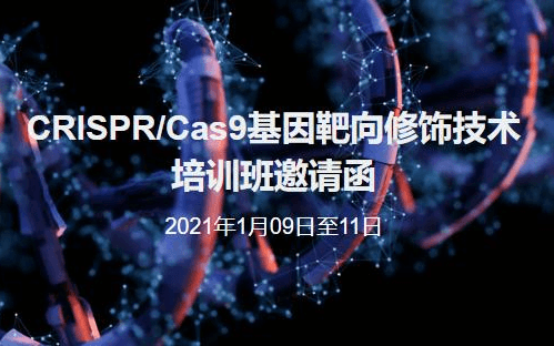 CRISPR/Cas9基因靶向修饰技术培训班北京1月班