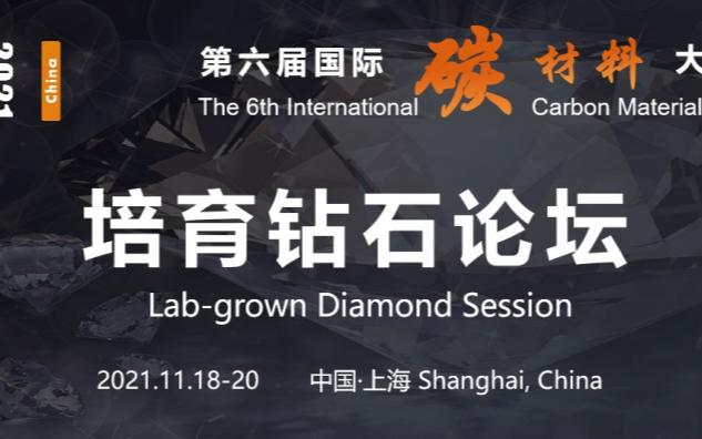第六届国际碳材料大会暨产业展览会 培育钻石论坛