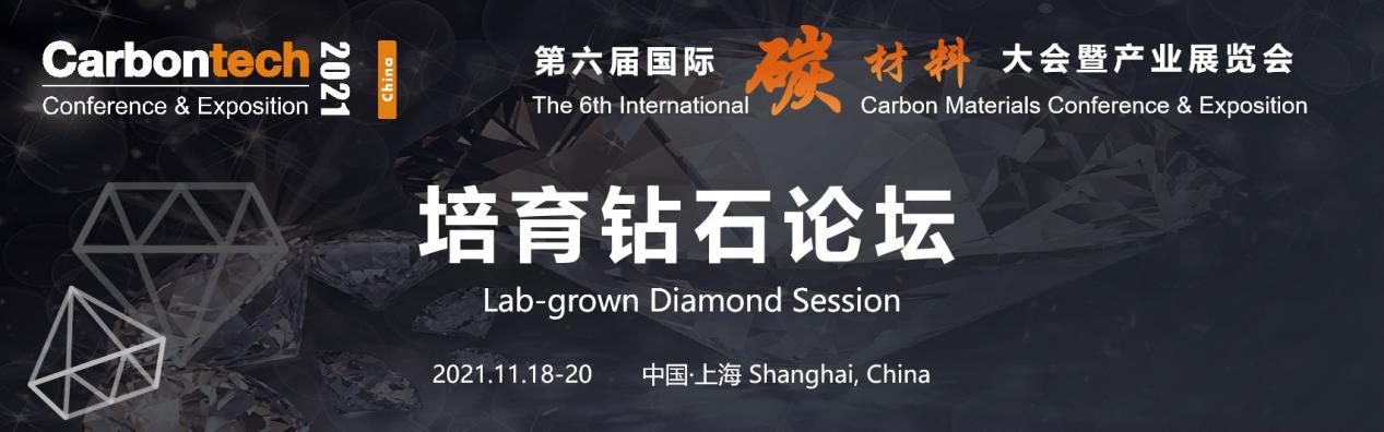 第六屆國際碳材料大會暨產業展覽會 培育鉆石論壇