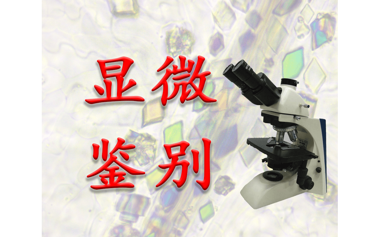 第二十二届全国中药材及饮片显微鉴别技能实训研修班