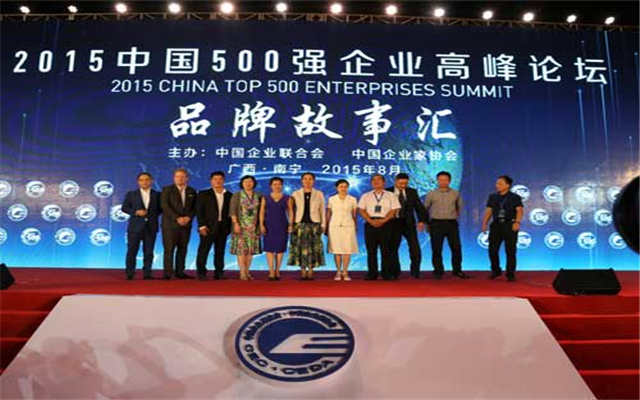 2015中国500强企业高峰论坛 现场图片