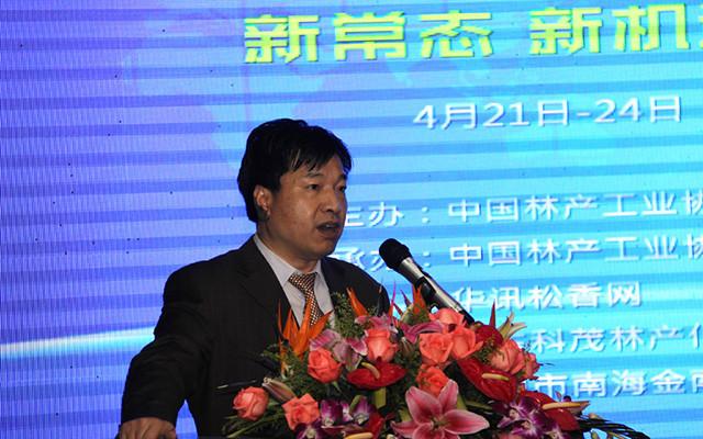 2015年中国松香产业高峰论坛现场图片