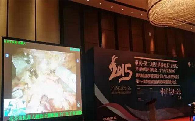 2015年第二届妇科肿瘤学长江论坛现场图片