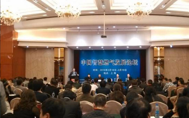 2015中国智慧燃气发展论坛现场图片