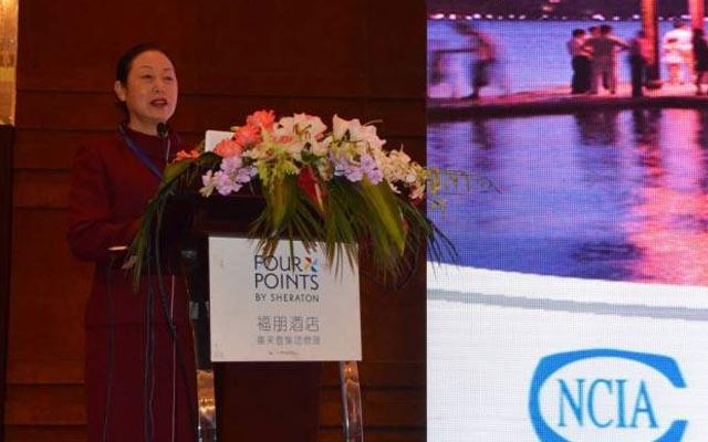 2015年中国涂料、颜料行业工作年会现场图片