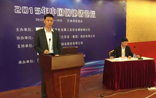 2015年中国铟铋锗论坛现场图片