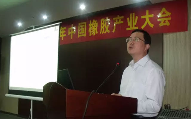 2015年中国橡胶产业大会现场图片
