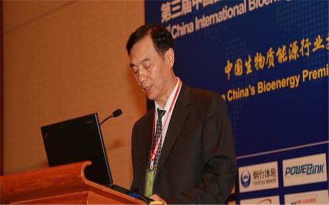 2015中国国际生物质能源与生物质利用高峰论坛(BBS 2015)现场图片