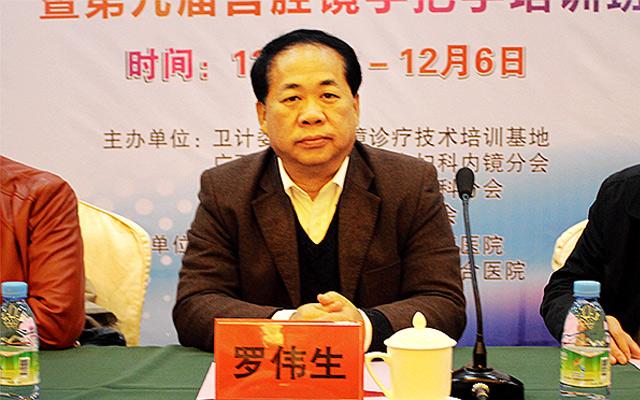 2015第九届中国东盟内镜与内镜(妇科)学术研讨会现场图片