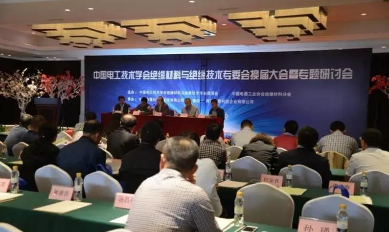 中国电工技术学会绝缘材料与绝缘技术专委会专题研讨会现场图片