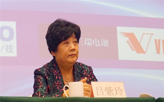 2015年中国国际铅酸蓄电池高峰论坛现场图片