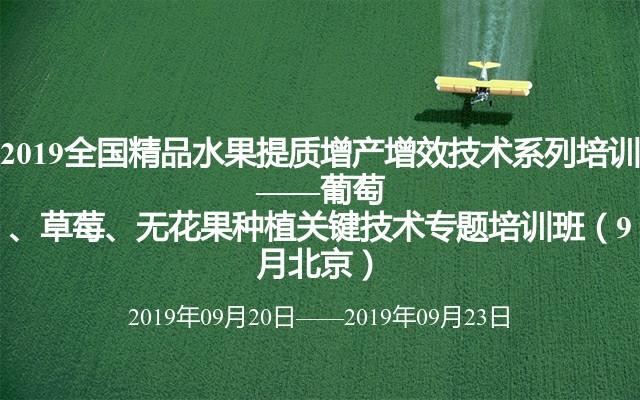 2019全国精品生果提质增产增效技术系列训练 ——葡萄、草莓、无花果栽培关键技术专题训练班(9月北京)