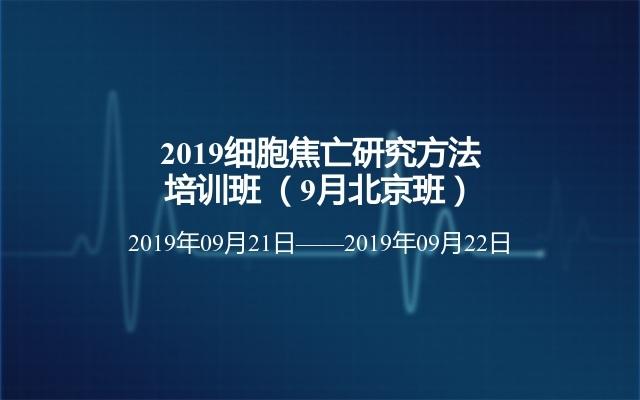 2019细胞焦亡研究方法培训班 (9月北京班)