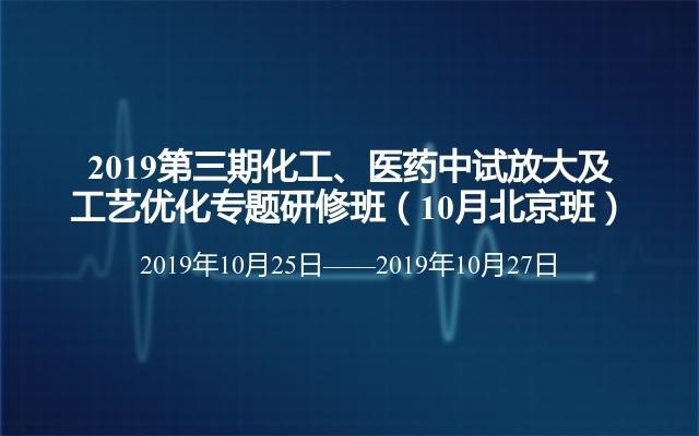 2019第三期化工、医药中试放大及工艺优化专题研修班(10月北京班)