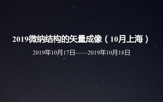 2019微纳结构的矢量成像(10月上海)