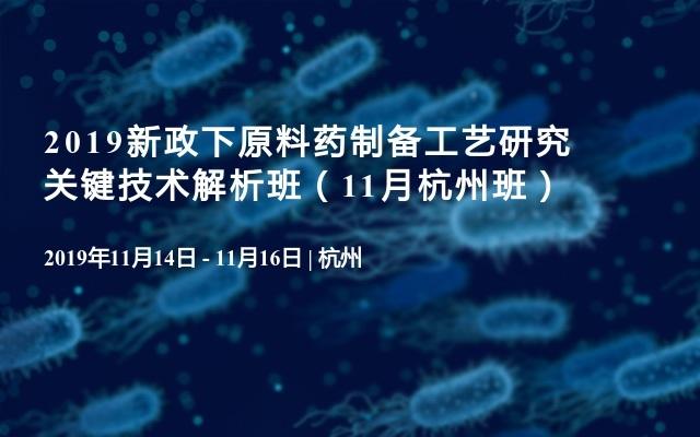2019新政下原料药制备工艺研究关键技术解析班(11月杭州班)