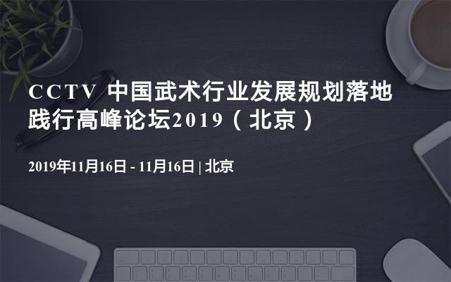 CCTV 中国武术行业发展规划落地践行高峰论坛2019(北京)