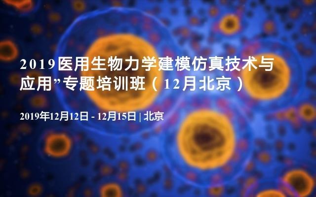 2019医用生物力学建模仿真技术与应用专题培训班(12月北京)