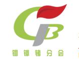 中国有色金属工业协会铟铋锗分会